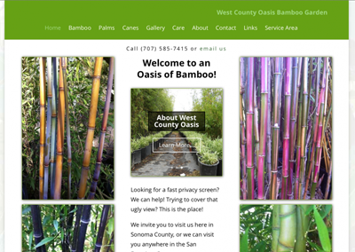 West County Oasis Bamboo Garden