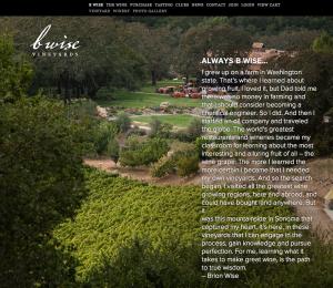 Online Marketing Amp Seo Company In Santa Rosa Ca