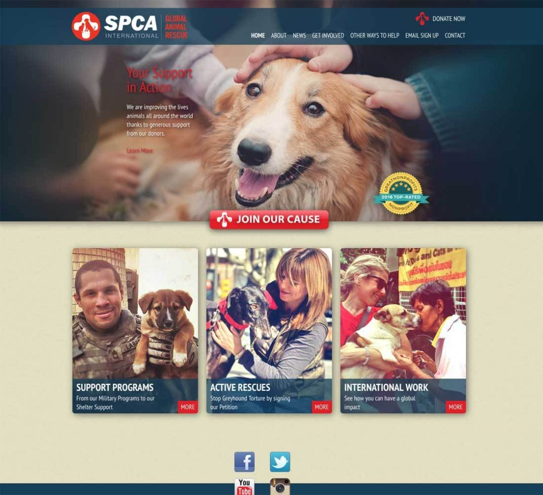 SPCA International